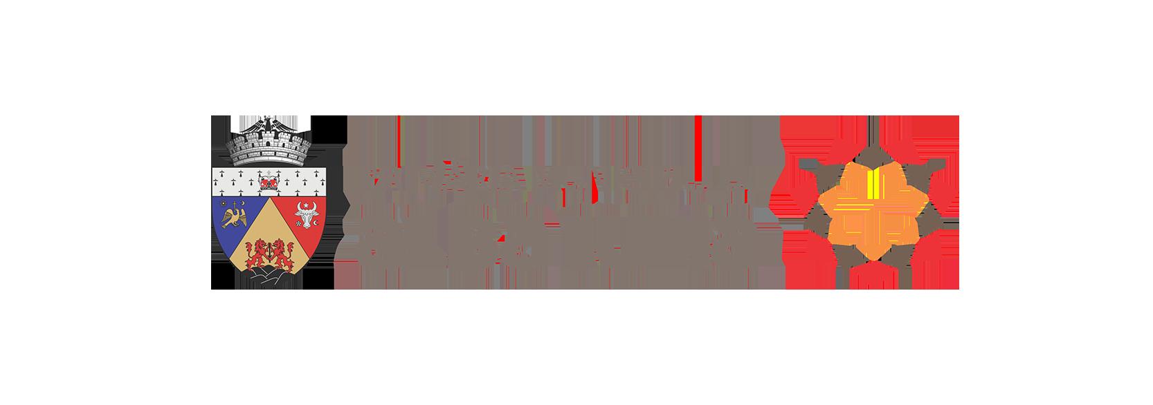 Logo-AlbaIuliaSmartCity copy